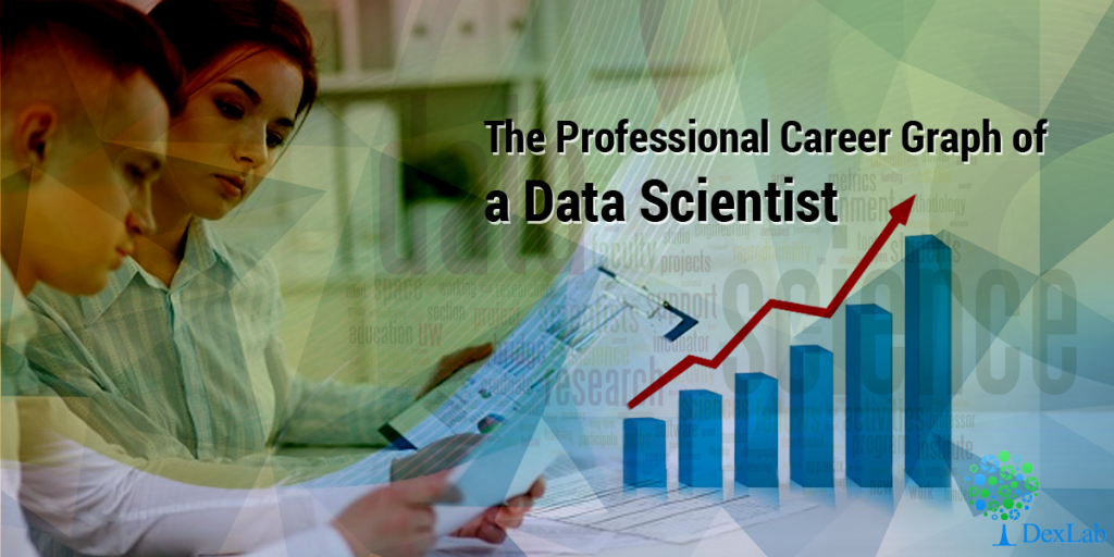 The Professional Career Graph of a Data Scientist