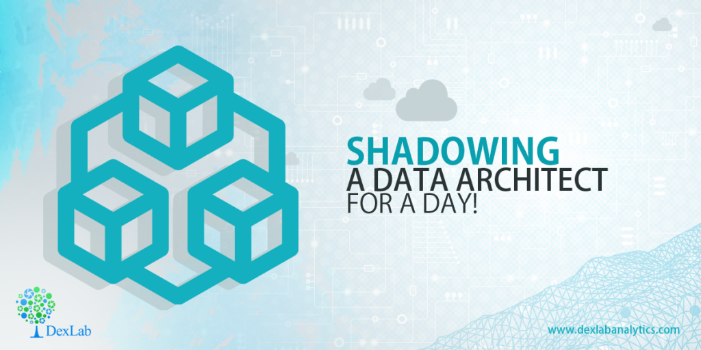Shadowing a Data Architect for a Day!