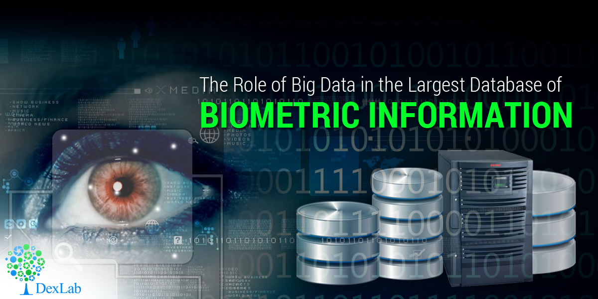 The Role of Big Data in the Largest Database of Biometric Information