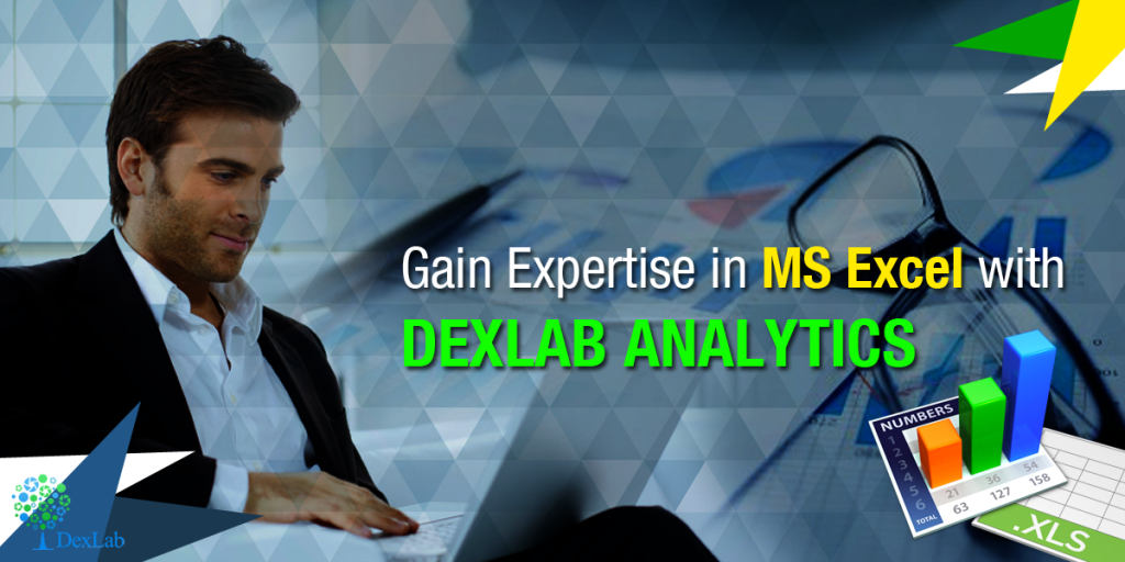 Gain Expertise in MS Excel with DexLab Analytics
