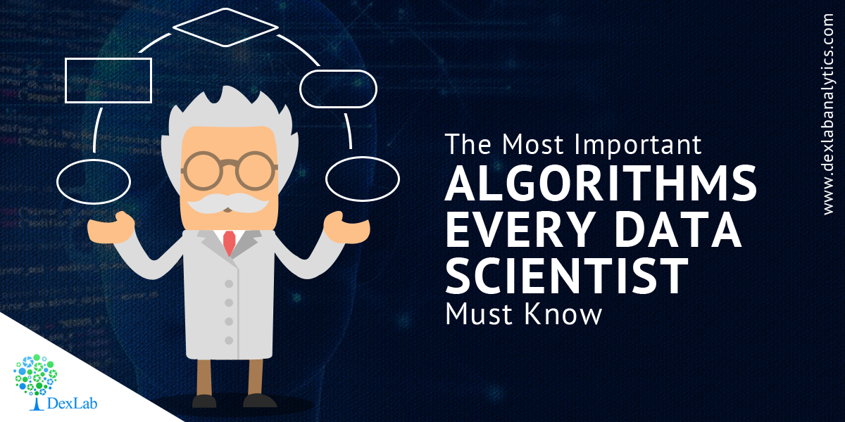 The Most Important Algorithms Every Data Scientist Must Know
