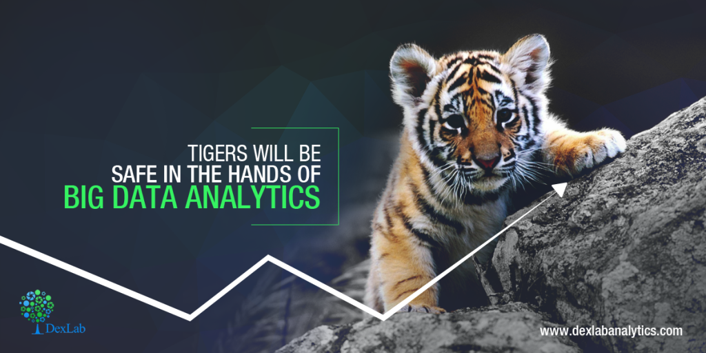 Tigers will be safe in the hands of Big Data Analytics