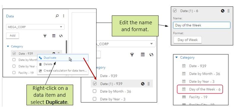 Data_Pane_in_SAS_Visual_Analytics18