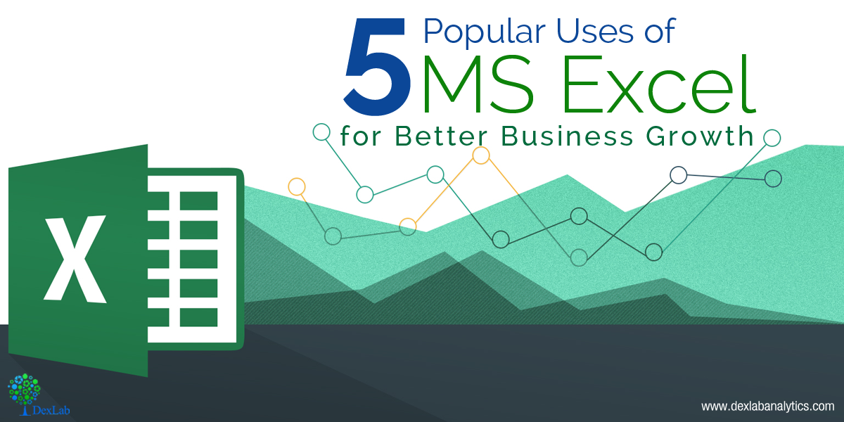 5 Popular Uses of MS Excel for Better Business Growth
