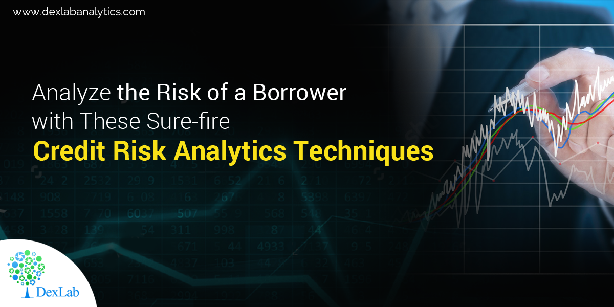 Analyze the Risk of a Borrower with These Sure-fire Credit Risk Analytics Techniques