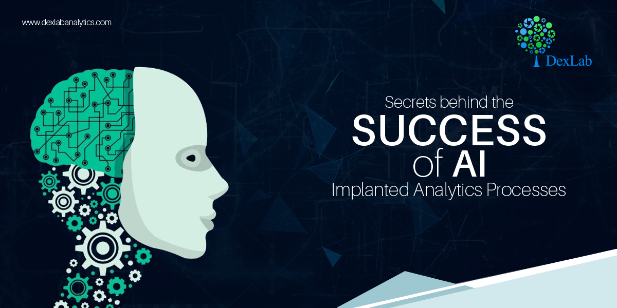 Secrets behind the Success of AI Implanted Analytics Processes