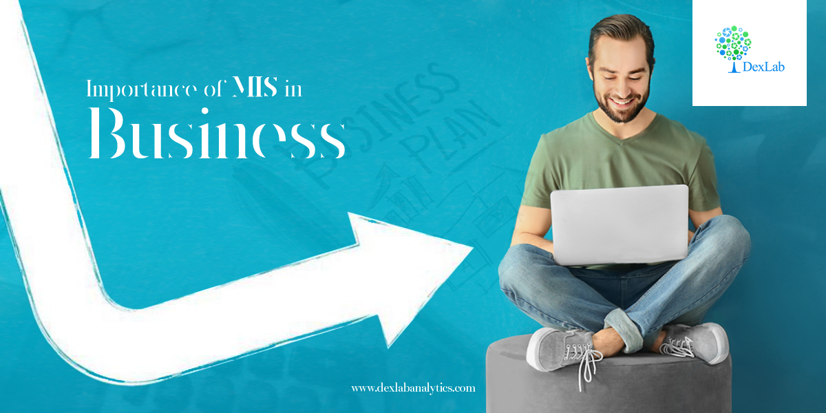 Importance of MIS in Business
