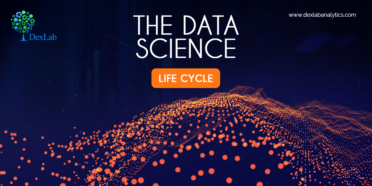 The Data Science Life Cycle