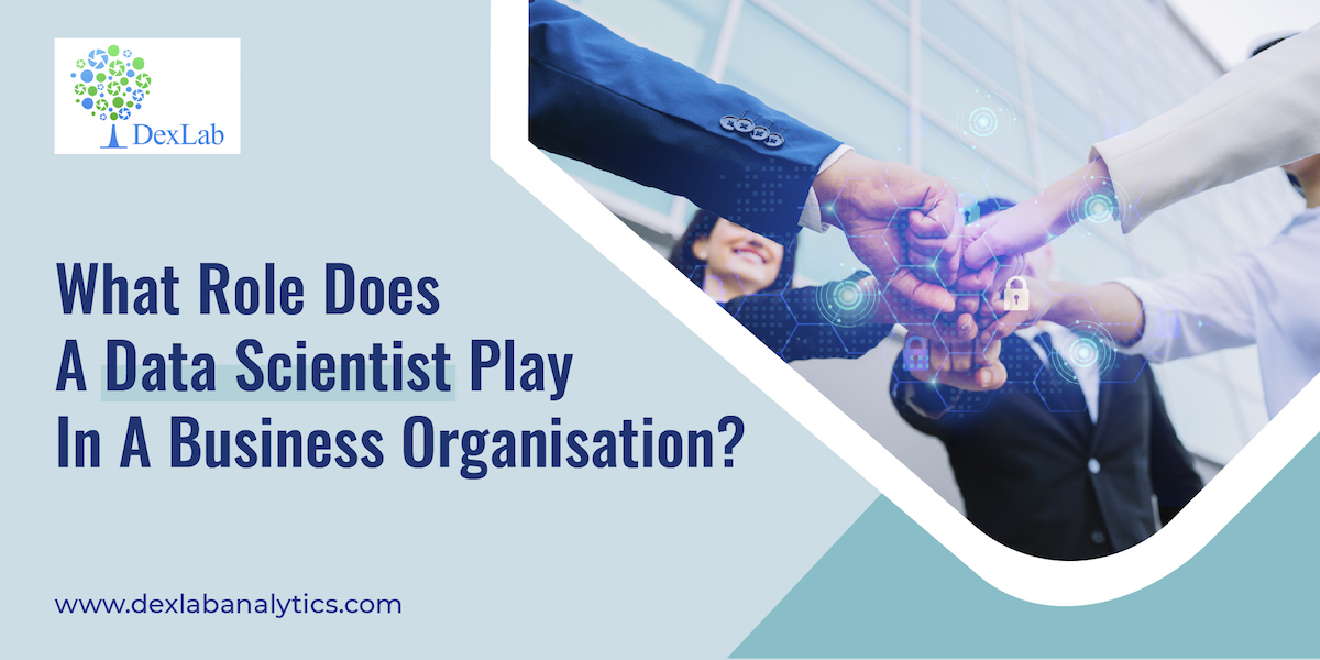 What Role Does A Data Scientist Play In A Business Organization?